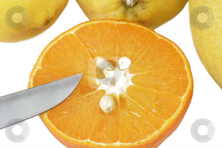 Sliced orange stock photo, Fresh orange sliced isolated on white background by Birgit Reitz-Hofmann