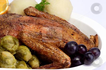 Duck dinner_1 stock photo, Roasted duck dinner on bright background by Birgit Reitz-Hofmann