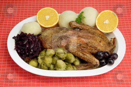 Duck dinner_6 stock photo, Roasted duck dinner on red background by Birgit Reitz-Hofmann