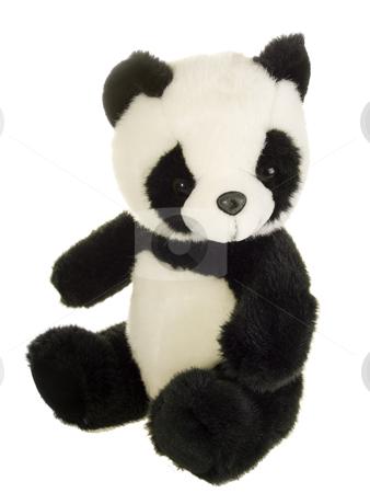 Panda Bear stock photo, Cute stuffed animal on white background by Birgit Reitz-Hofmann