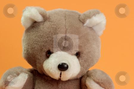 Teddy bear stuffed stock photo, Cute stuffed animal on orange background by Birgit Reitz-Hofmann