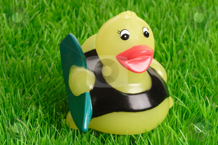 Surfing stock photo, Yellow toy duck as surfer on green grass background by Birgit Reitz-Hofmann