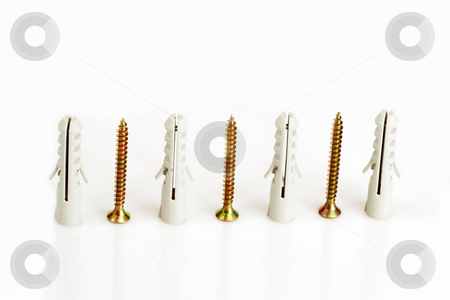 Screws and dowels_1 stock photo, Screws and dowels in a row on bright background by Birgit Reitz-Hofmann