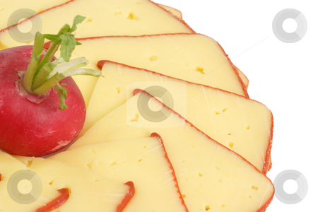 Cheese slices stock photo, Cheese slices with radish on bright background by Birgit Reitz-Hofmann