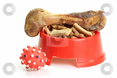 Dog fun stock photo, Red bowl with dog food and dog toy by Birgit Reitz-Hofmann