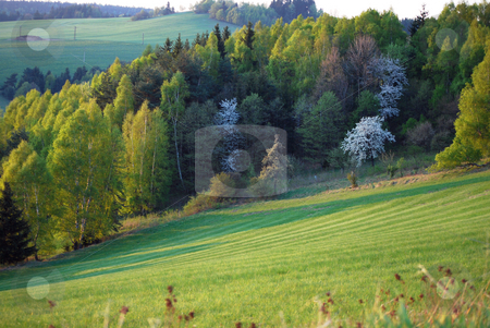 Landscape stock photo, Picture from czech landscape by Sarka