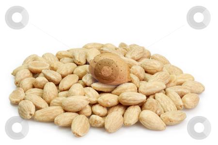 Almonds stock photo, Almonds on the bright background. by Birgit Reitz-Hofmann