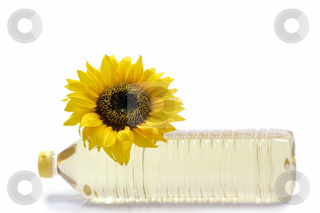 Cooking oil stock photo, Sunflower with cooking oil bottle on white background by Birgit Reitz-Hofmann