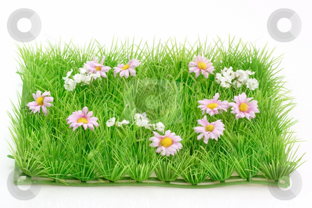 Grass meadow stock photo, Decorative grass meadow on bright background by Birgit Reitz-Hofmann