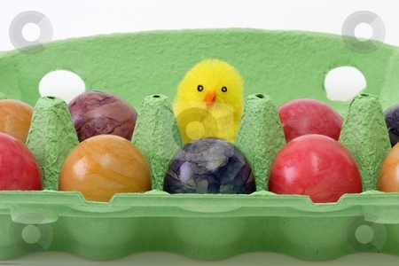 Easter eggs stock photo, Colorful eggs in a carton with toy chicken by Birgit Reitz-Hofmann