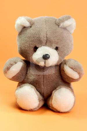 Stuffed Teddy Bear stock photo, Cute stuffed animal on orange background by Birgit Reitz-Hofmann