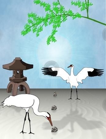 Cranes in a Garden stock photo, Two whooping cranes curiously investigate a Japanese Zen garden - a raster illustration. by Karen Carter