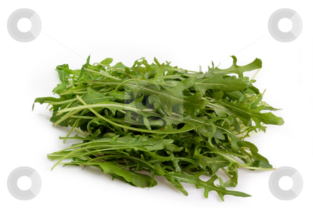 Rucola stock photo, Fresh Rucola Salad on bright background by Birgit Reitz-Hofmann