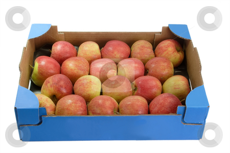 Fresh apples_2 stock photo, Apples in a cardboard box isolated on white background by Birgit Reitz-Hofmann