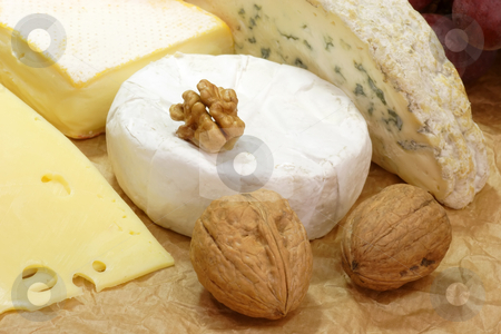 Cheese_1 stock photo, Stillife with cheese on brown background by Birgit Reitz-Hofmann