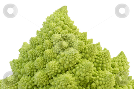 Romanesco_4 stock photo, Romanesco cabbage isolated on white background by Birgit Reitz-Hofmann