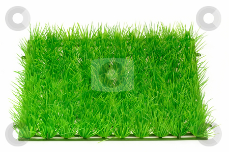 Grass meadow_1 stock photo, Decorative grass meadow on bright background by Birgit Reitz-Hofmann