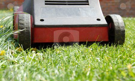Mower in grass stock photo, Red  mowing machine on green grass closeup by Julija Sapic