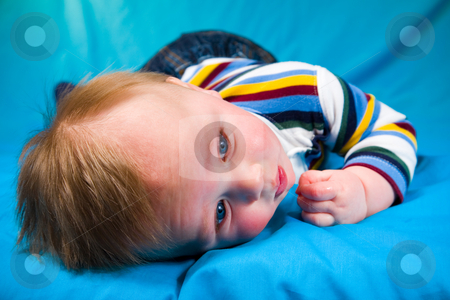 Cute Baby Boy stock photo, A portrait of a cute five month old baby boy. Shallow depth of field. by Travis Manley