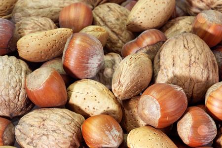 Nuts stock photo, Assortment of nuts as background by Birgit Reitz-Hofmann