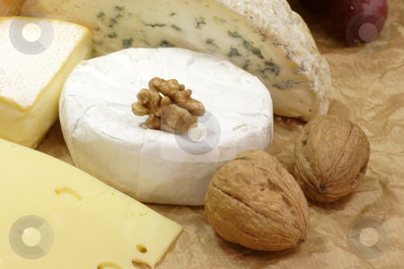 Cheese stock photo, Stillife with cheese on brown background by Birgit Reitz-Hofmann