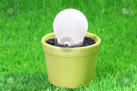 Energy saving lamp stock photo, Energy saving lamp on a grass meadow as background by Birgit Reitz-Hofmann