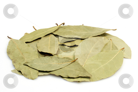 Bay leaves stock photo, Pile of bay leaves on brihgt background by Birgit Reitz-Hofmann