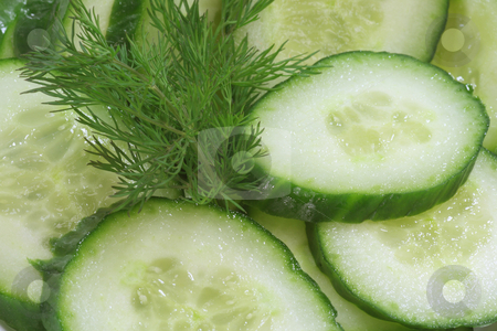 Cucumber salad stock photo, Cucumber salad with dill in fetail as background by Birgit Reitz-Hofmann