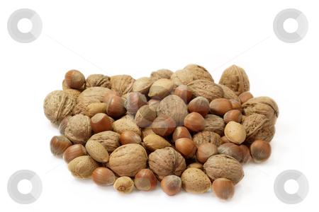 Nuts stock photo, Assortment of nuts on bright background by Birgit Reitz-Hofmann