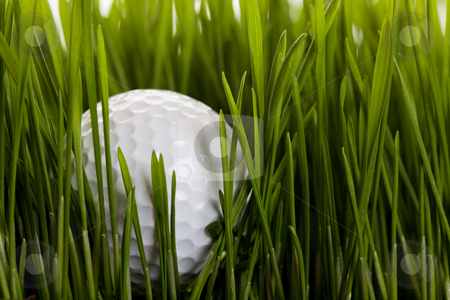 Out of bounds stock photo, A golf ball sitting in the long grass by Steve Mcsweeny