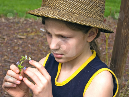 Cute 8 Year Old Girl with Hat, Studying Small Flower stock photo, This cute 8 year old Caucasian girl is wearing a natural hat and closely studying a small flower. by Valerie Garner