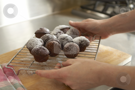 Freshly baked chocolate cupcakes held by female hands stock photo, Chocloate cupcakes, freshly baked on a cooling rack held by female hands by Gary Cookson
