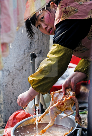 Chinese cook stock photo, Chinese cook  in shanghai china washing a duck by Kobby Dagan