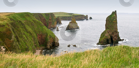 Sea stacks and cliffs stock photo, Viewpoint on duncansby head scotland towards several sea stacks by Karin Claus