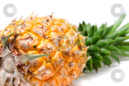 Pineapple stock photo, Ripe vivid pineapple close up over white background by Francesco Perre