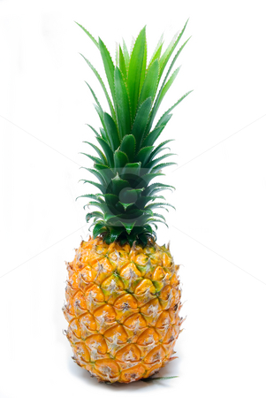 Pineapple stock photo, Ripe vivid pineapple isolated over white background by Francesco Perre