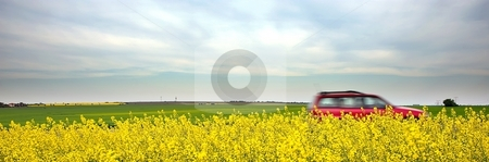 Car and yellow field stock photo, Speeding car and yellow fields by Juraj Kovacik
