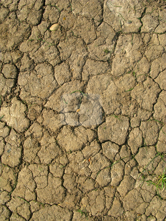 Dry cracked mud pattern close up. stock photo, Dry cracked mud pattern close up. by Stephen Rees