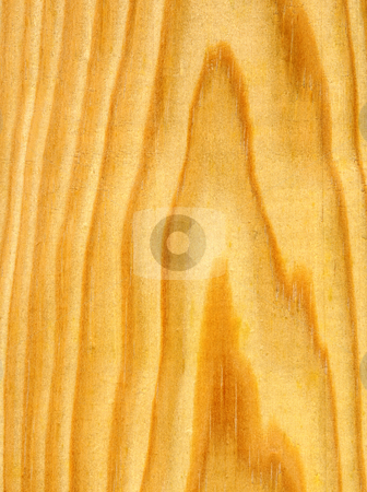 Pine wood ring lines close up. stock photo, Pine wood ring lines close up. by Stephen Rees