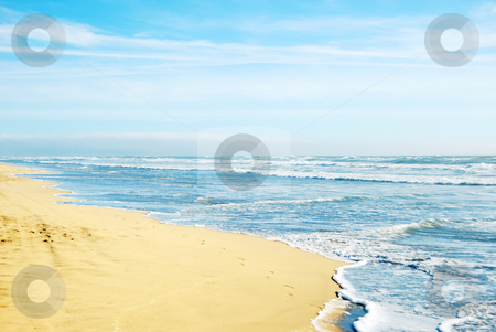 Beach in San Francisco California stock photo, Beach in San Francisco California with waves coming to the sand and blue sky background. by Denis Radovanovic