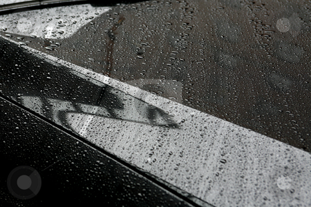 Rain Refelctions stock photo, Rain Drops and Reflected Pattern on metal surface by Terise Slotkin