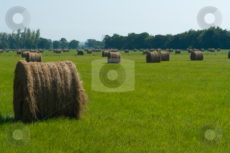 Strohballen, Straw bales stock photo, Strohballen, Straw bales by Wolfgang Heidasch