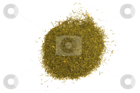 Dill (Anethum graveolens) stock photo, Der Dill (Anethum graveolens), auch Gurkenkraut, Kappernkraut, D?ll, Till, K?mmerlingskraut oder Dillfenchel genannt, ist eine Pflanzenart aus der Familie der Doldenbl?tler (Apiaceae, veraltet Umbelliferae). - Dill (Anethum graveolens) is a short-lived perennial herb. by Wolfgang Heidasch