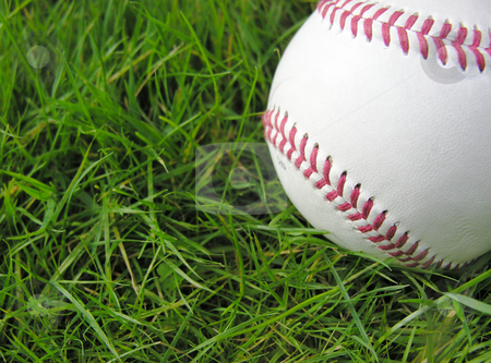 Baseball in Grass stock photo,  by Kirsty Pargeter