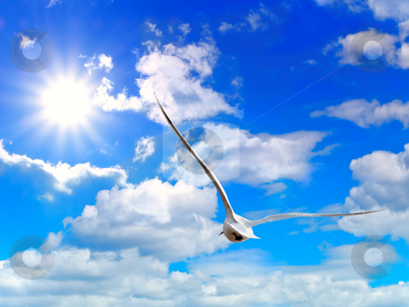 Sky stock photo, Blue cloudy sky with sun by Sergej Razvodovskij