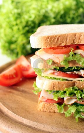 Sandwich stock photo, Huge Sandwich by Jan Martin Will