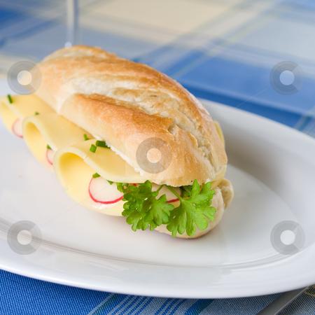 Sandwich stock photo, Vegetarian sandwich by Jan Martin Will
