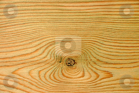 Wood knot and wood rings. stock photo, Wood knot and wood rings background. by Stephen Rees