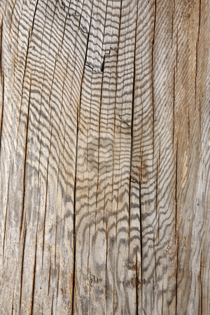 Abstract wood pattern background. stock photo, Abstract wood pattern background. by Stephen Rees