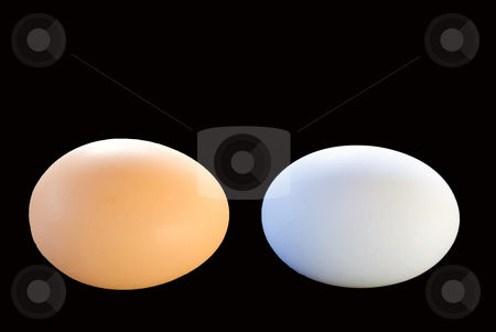 Two eggs stock photo, One brown egg and one white egg on a black background by Wolfgang Zintl